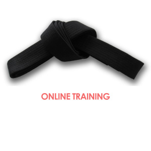 Lean Six Sigma Black Belt Online Training