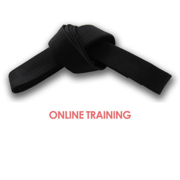 Lean Six Sigma Black Belt Online Training Six Sigma Training And