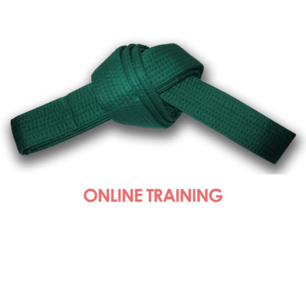 Lean Six Sigma Green Belt Online Training