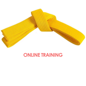 Lean Six Sigma Yellow Belt Online Training
