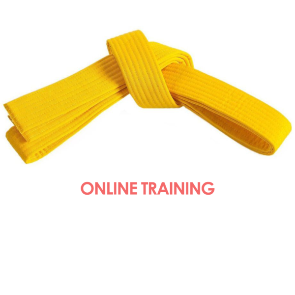Lean Six Sigma Yellow Belt Online Training