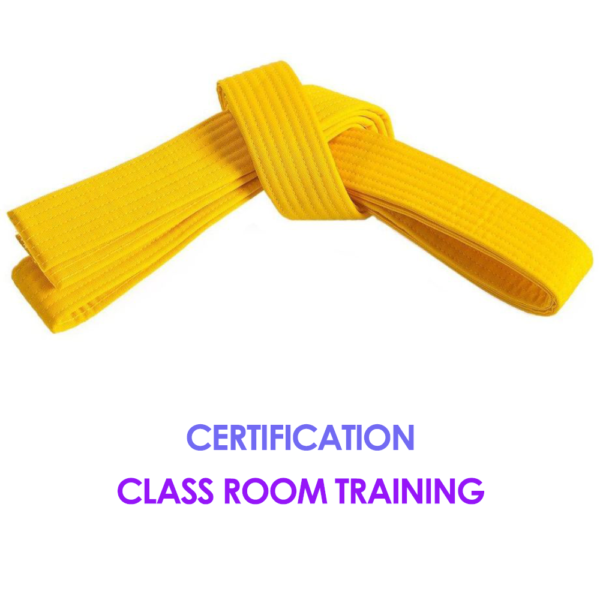 Six Sigma Yellow Belt Certification